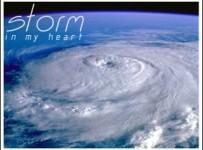 Storm_in_my_heart.jpg_thumb