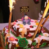 cofetaria_cornovac_tort_copii