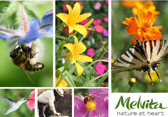 Interviu cu Christian Ecker, Melvita, despre miere si viata