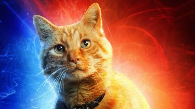 Despre București și o super pisică în Captain Marvel